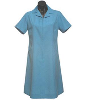 Karen Nurse Dress